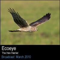 Ecoeye