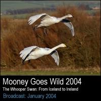 Mooney2004