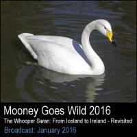 Mooney2016
