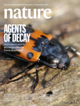 Nature Cover 597 7874